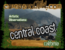 central-coast-ad.png