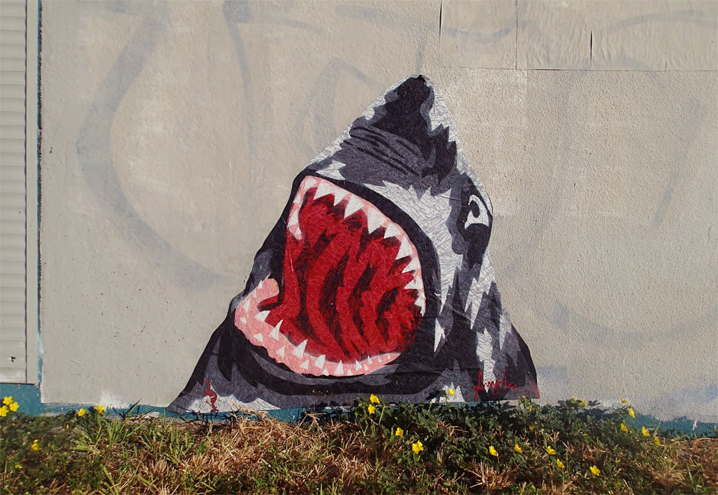 Snyder-shark-miami